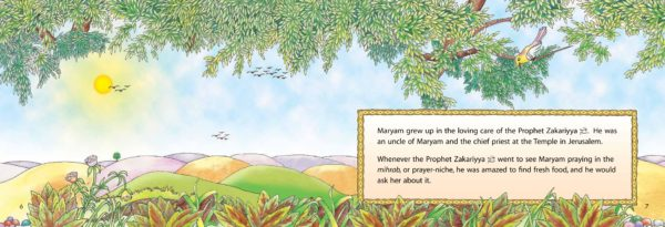 The Miraculous Baby(HB)-Good Word Books-page- (2)